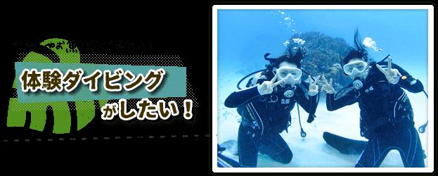 体験ダイビングパナリ島