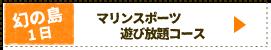 幻の島&マリンスポーツ