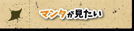 マンタが見れる石垣島
