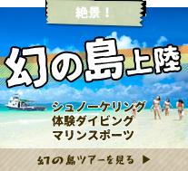 幻の島上陸体験ダイビング